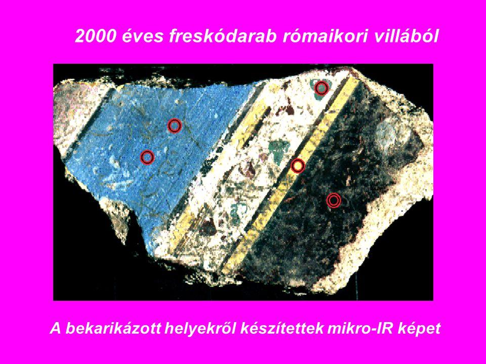 2000 éves freskódarab rómaikori villából A bekarikázott helyekről készítettek mikro-IR képet