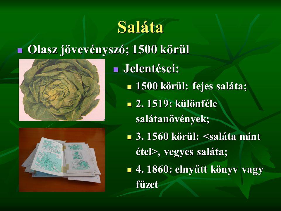 Saláta Olasz jövevényszó; 1500 körül Olasz jövevényszó; 1500 körül Jelentései: Jelentései: 1500 körül: fejes saláta; 2.