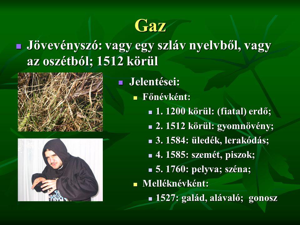 Gaz Jövevényszó: vagy egy szláv nyelvből, vagy az oszétból; 1512 körül Jövevényszó: vagy egy szláv nyelvből, vagy az oszétból; 1512 körül Jelentései: Jelentései: Főnévként: 1.