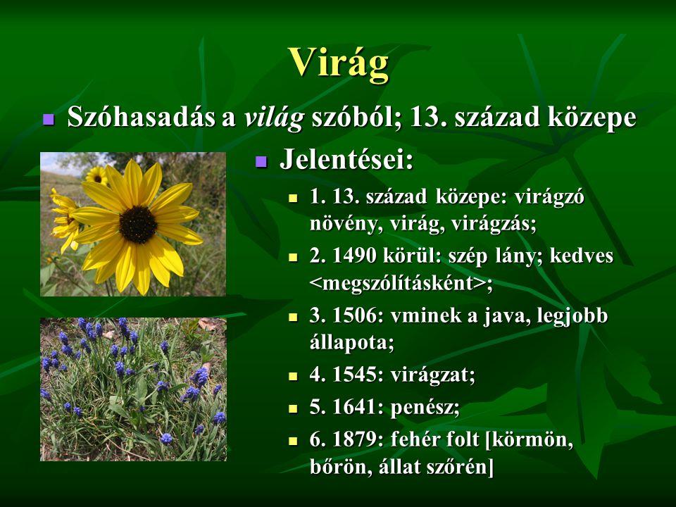Virág Szóhasadás a világ szóból; 13. század közepe Szóhasadás a világ szóból; 13.