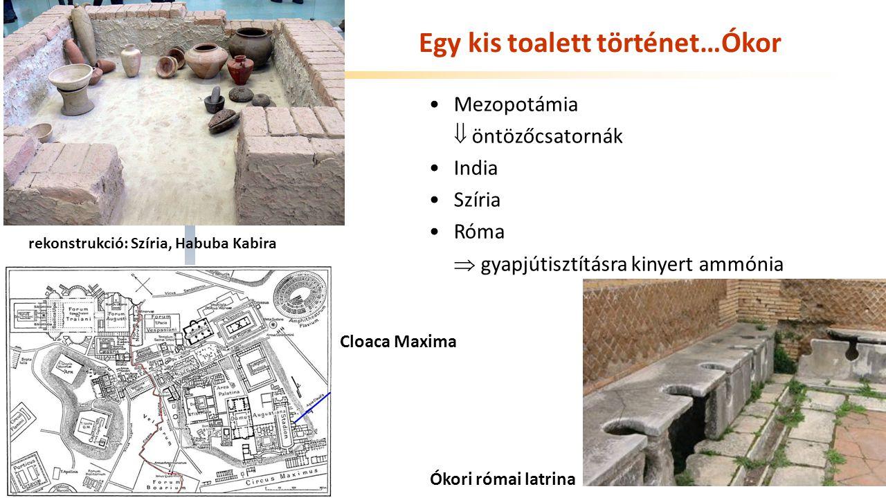 Széchenyi István Egyetem Egy kis toalett történet…Ókor Mezopotámia  öntözőcsatornák India Szíria Róma  gyapjútisztításra kinyert ammónia rekonstrukció: Szíria, Habuba Kabira Cloaca Maxima Ókori római latrina