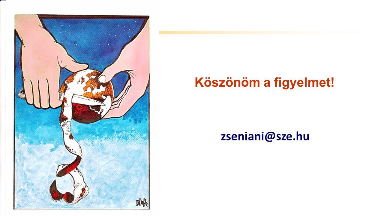 Széchenyi István Egyetem Köszönöm a figyelmet! zseniani@sze.hu