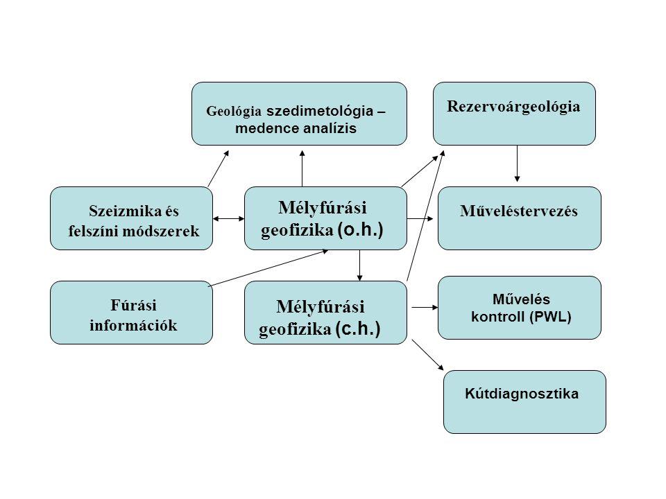 Mélyfúrási geofizika (o.h.) Szeizmika és felszíni módszerek Geológia szedimetológia – medence analízis Rezervoárgeológia Műveléstervezés Fúrási információk Mélyfúrási geofizika (c.h.) Kútdiagnosztika Művelés kontroll (PWL)