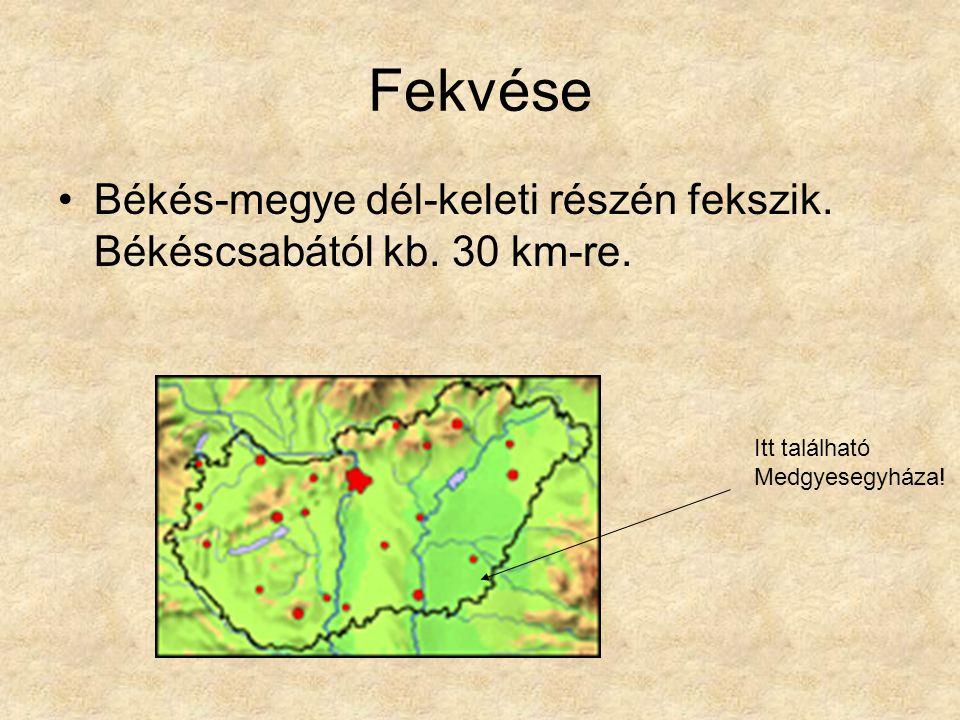 Fekvése Békés-megye dél-keleti részén fekszik. Békéscsabától kb.