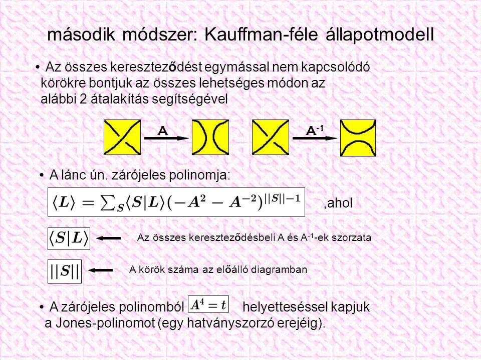 második módszer: Kauffman-féle állapotmodell Az összes kereszteződést egymással nem kapcsolódó körökre bontjuk az összes lehetséges módon az alábbi 2 átalakítás segítségével A lánc ún.