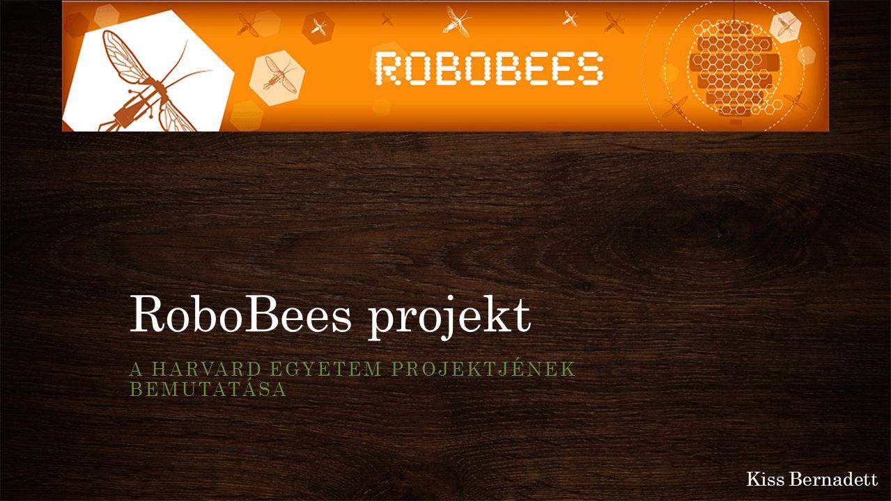 RoboBees projekt A HARVARD EGYETEM PROJEKTJÉNEK BEMUTATÁSA Kiss Bernadett