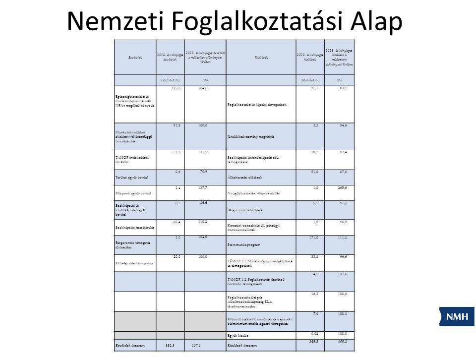 Nemzeti Foglalkoztatási Alap Bevételek 2013. évi tényleges bevételek 2013.