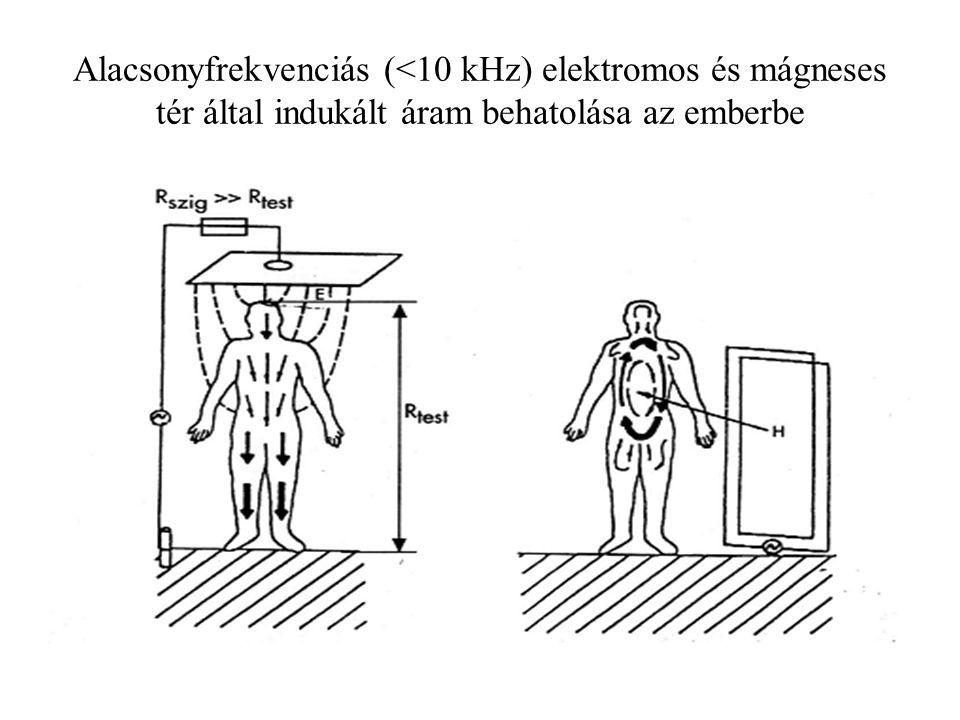 Alacsonyfrekvenciás (<10 kHz) elektromos és mágneses tér által indukált áram behatolása az emberbe
