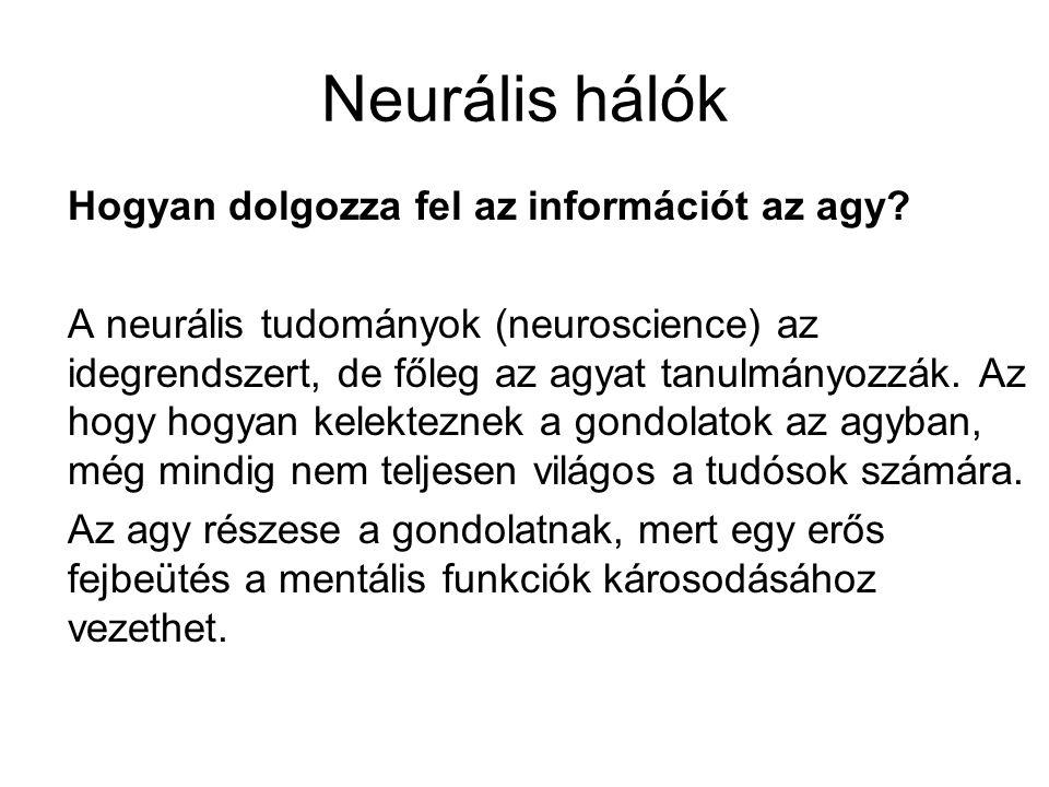 Hogyan dolgozza fel az információt az agy.