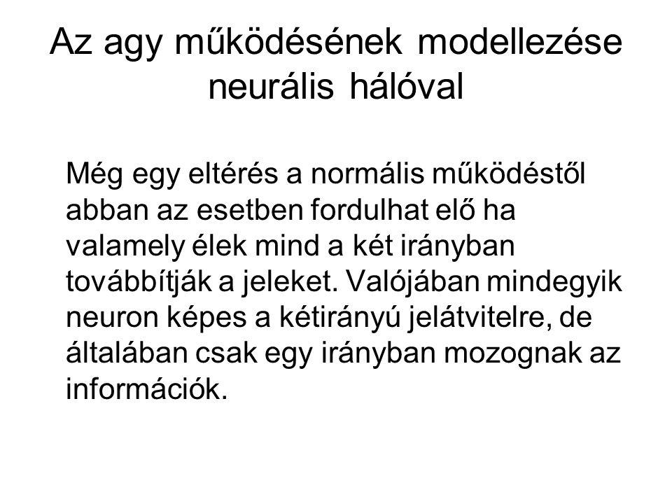 Az agy működésének modellezése neurális hálóval Még egy eltérés a normális működéstől abban az esetben fordulhat elő ha valamely élek mind a két irányban továbbítják a jeleket.