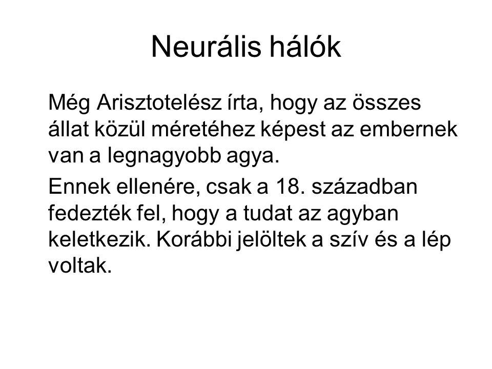 Neurális hálók Még Arisztotelész írta, hogy az összes állat közül méretéhez képest az embernek van a legnagyobb agya. Ennek ellenére, csak a 18. száza
