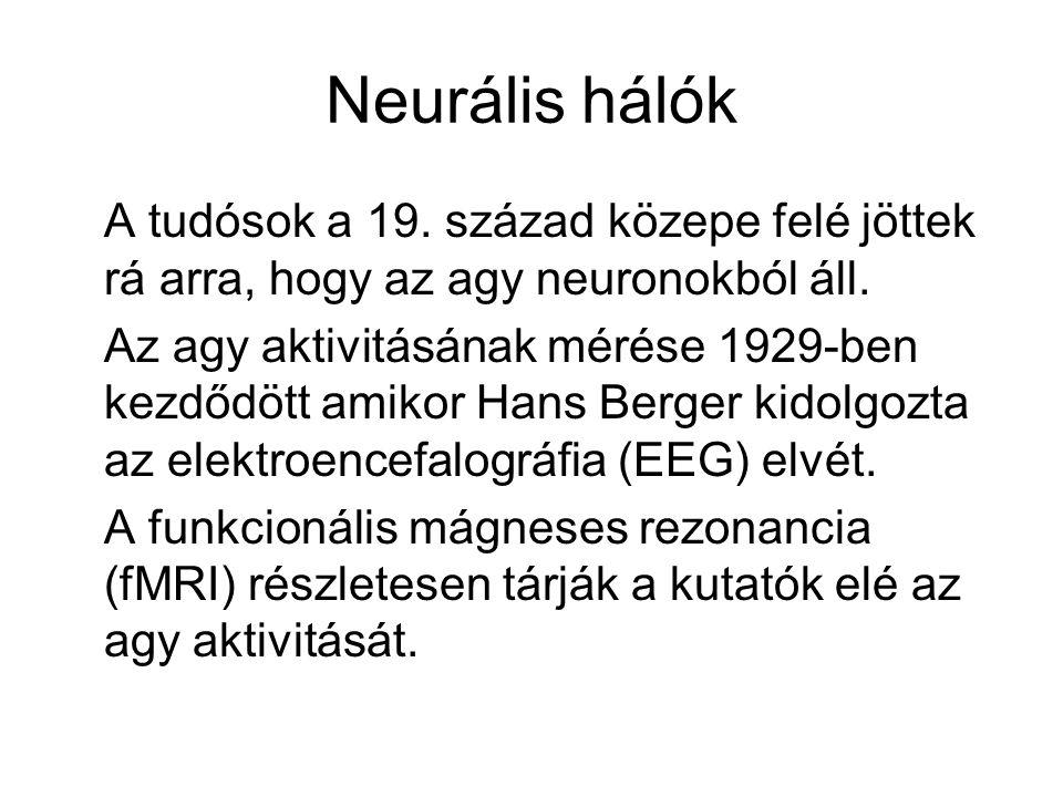 Neurális hálók A tudósok a 19. század közepe felé jöttek rá arra, hogy az agy neuronokból áll. Az agy aktivitásának mérése 1929-ben kezdődött amikor H