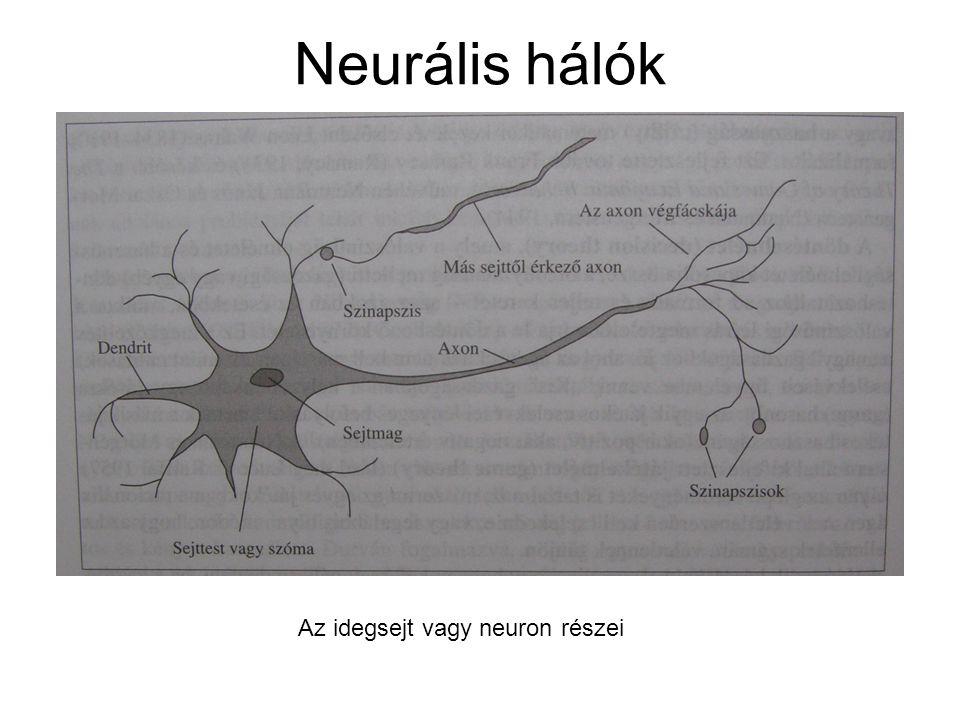 Neurális hálók Az idegsejt vagy neuron részei