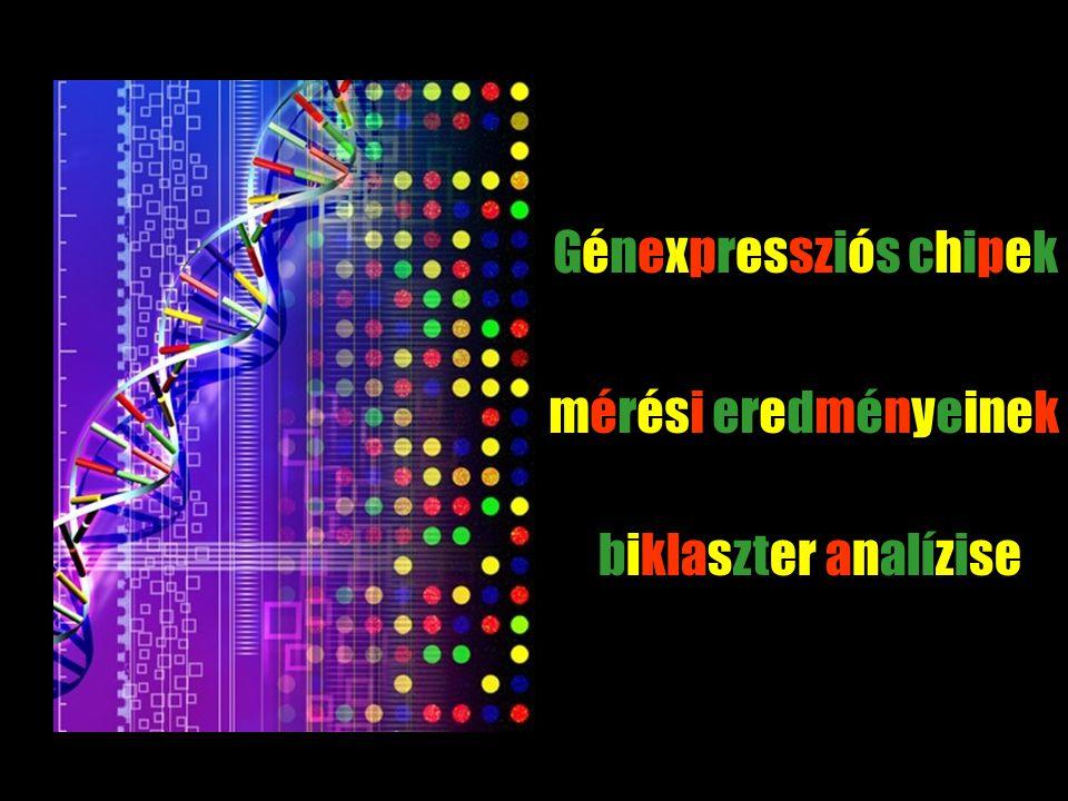 élő rendszerek komplexitása - A biológia informatizálódása hirtelen rengeteg adat alkalmazás: diagnosztika - Mintázatokat keresünk megértés: genomika, systems biology In-silico biológiai kutatások - Adatbányászat új módzsrek fejlesztése Bevezetés