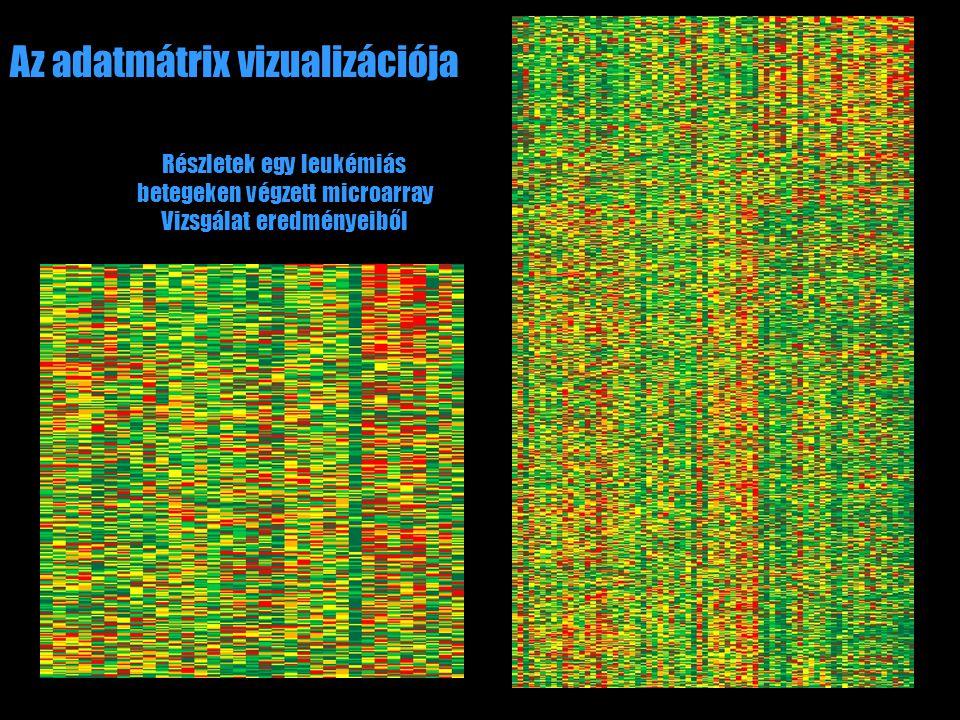 Az adatmátrix vizualizációja Részletek egy leukémiás betegeken végzett microarray Vizsgálat eredményeiből