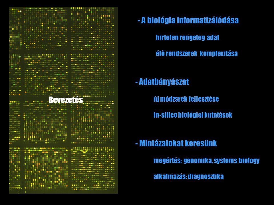élő rendszerek komplexitása - A biológia informatizálódása hirtelen rengeteg adat alkalmazás: diagnosztika - Mintázatokat keresünk megértés: genomika,