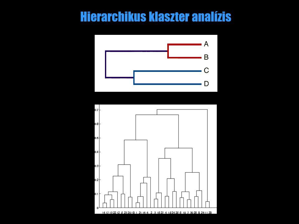 Hierarchikus klaszter analízis