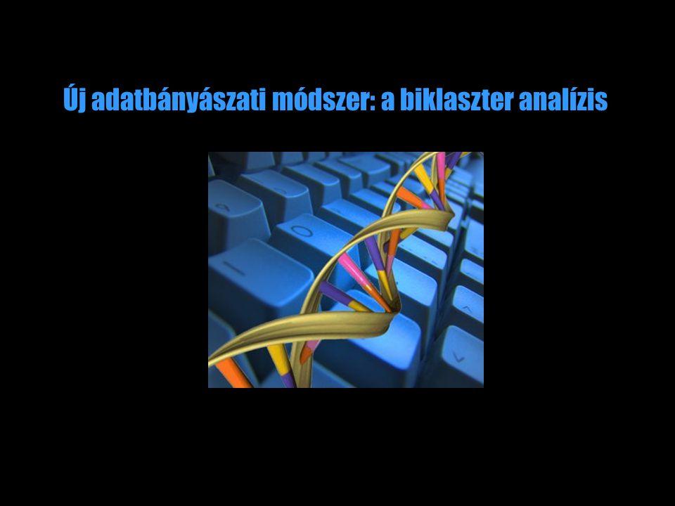 Új adatbányászati módszer: a biklaszter analízis