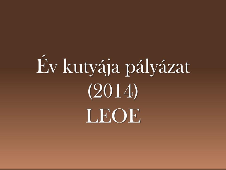 Év kutyája pályázat (2014) LEOE