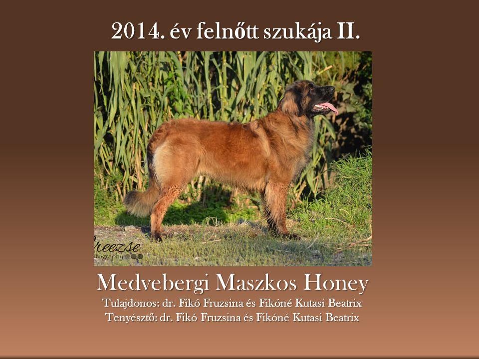 2014. év feln ő tt szukája II. Medvebergi Maszkos Honey Tulajdonos: dr. Fikó Fruzsina és Fikóné Kutasi Beatrix Tenyészt ő : dr. Fikó Fruzsina és Fikón