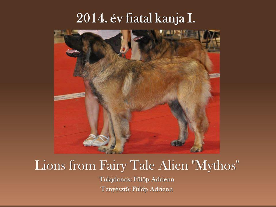 2014. év fiatal kanja I. Lions from Fairy Tale Alien