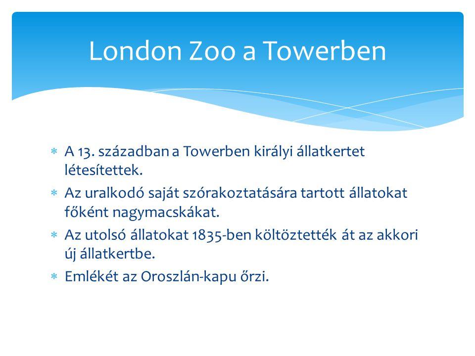  A 13. században a Towerben királyi állatkertet létesítettek.  Az uralkodó saját szórakoztatására tartott állatokat főként nagymacskákat.  Az utols