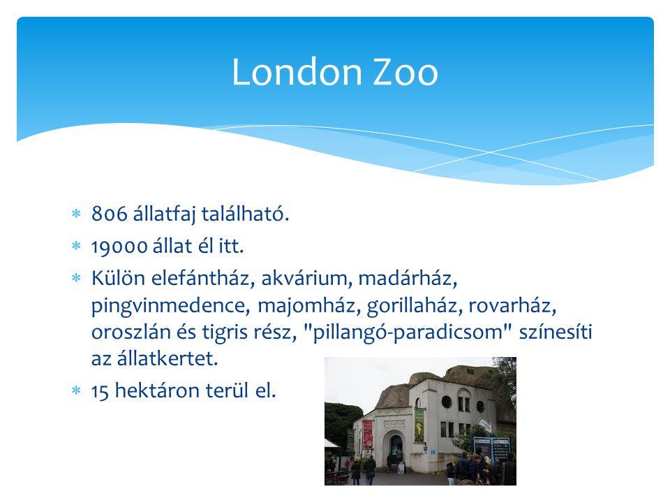  806 állatfaj található.  19000 állat él itt.  Külön elefántház, akvárium, madárház, pingvinmedence, majomház, gorillaház, rovarház, oroszlán és ti
