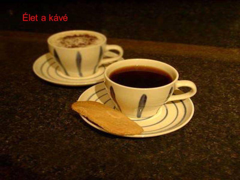 s nem a csésze, de tudatosan a jobb csészékre vadásztatok, s egymás csészéit figyeltétek.
