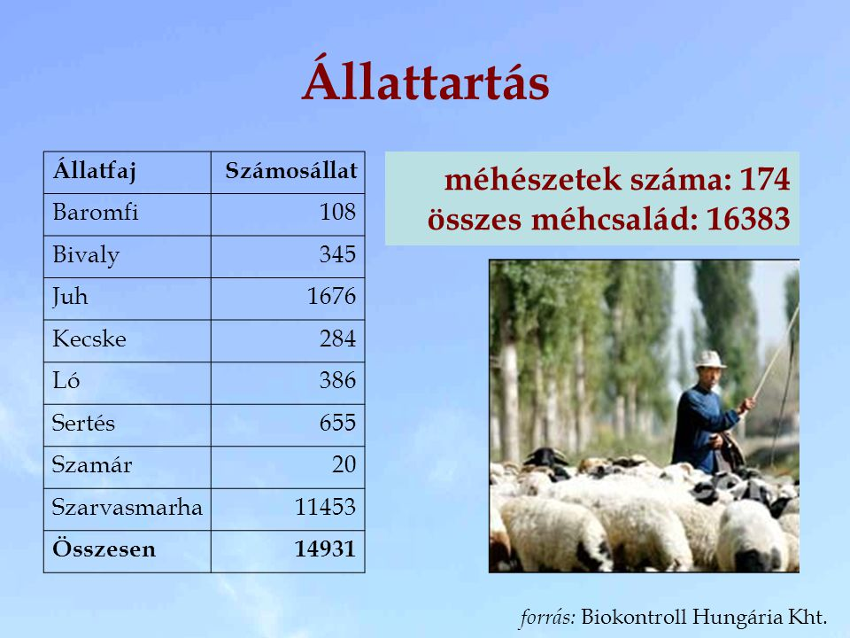Állattartás ÁllatfajSzámosállat Baromfi108 Bivaly345 Juh1676 Kecske284 Ló386 Sertés655 Szamár20 Szarvasmarha11453 Összesen14931 méhészetek száma: 174 összes méhcsalád: 16383 forrás: Biokontroll Hungária Kht.