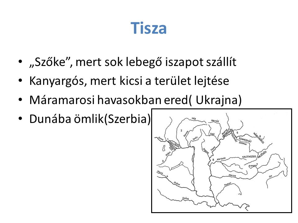 """Tisza """"Szőke"""", mert sok lebegő iszapot szállít Kanyargós, mert kicsi a terület lejtése Máramarosi havasokban ered( Ukrajna) Dunába ömlik(Szerbia)"""