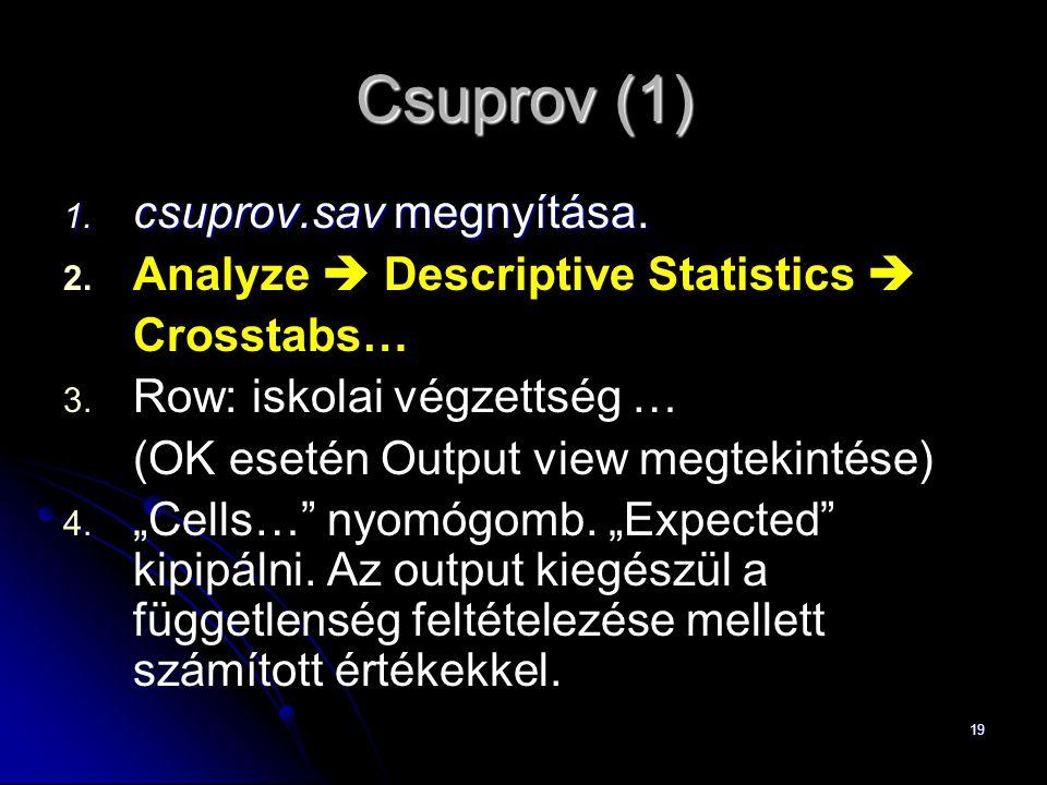 19 Csuprov (1) 1. csuprov.sav megnyítása. 2. 2. Analyze  Descriptive Statistics  Crosstabs… 3. 3. Row: iskolai végzettség … (OK esetén Output view m
