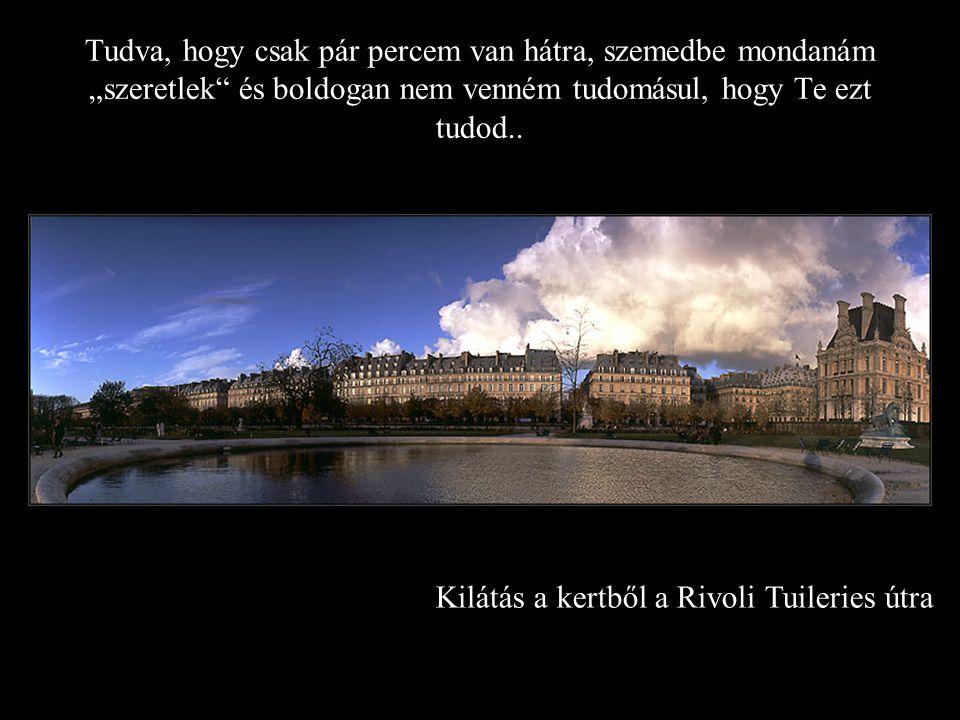 """Kilátás a kertből a Rivoli Tuileries útra Tudva, hogy csak pár percem van hátra, szemedbe mondanám """"szeretlek és boldogan nem venném tudomásul, hogy Te ezt tudod.."""