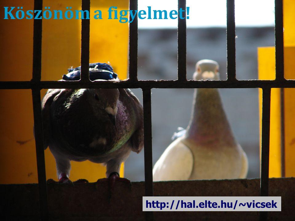 Köszönöm a figyelmet! http://hal.elte.hu/~vicsek