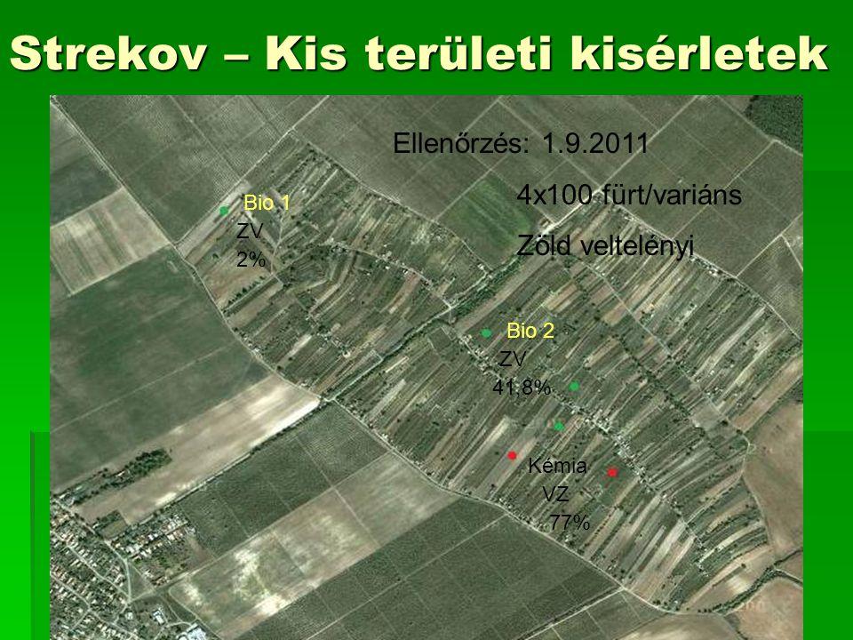 Strekov – Kis területi kisérletek Bio VZ 41,8% Chémia VZ 77% Bio 1 Bio 2 Kémia ZV VZ 2% 41,8% 77% Ellenőrzés: 1.9.2011 4x100 fürt/variáns Zöld veltelényi