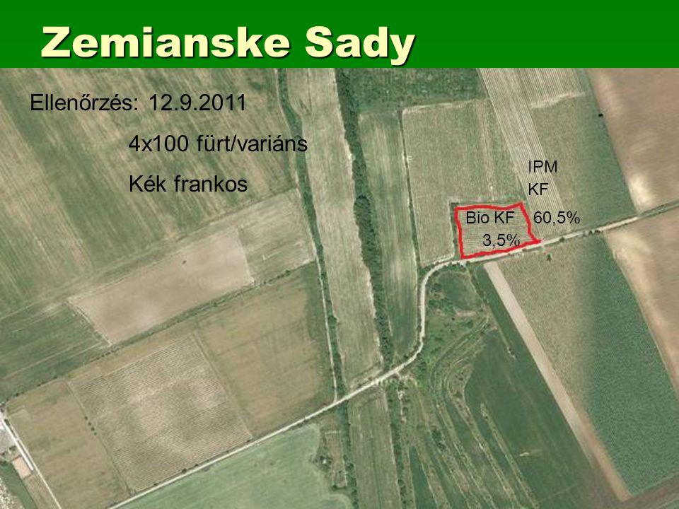 Zemianske Sady BioKF60,5% KF IPM 3,5% Ellenőrzés: 12.9.2011 4x100 fürt/variáns Kék frankos