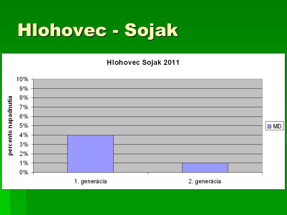 Hlohovec - Sojak