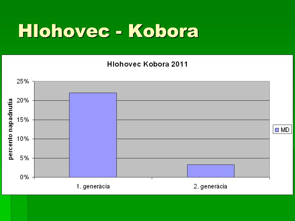 Hlohovec - Kobora