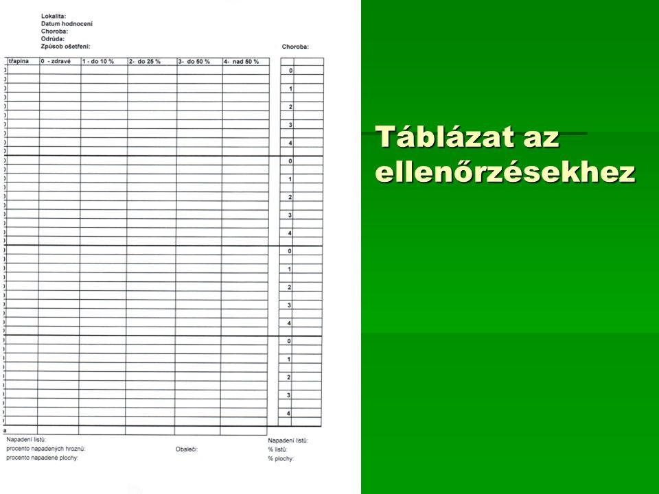 Táblázat az ellenőrzésekhez