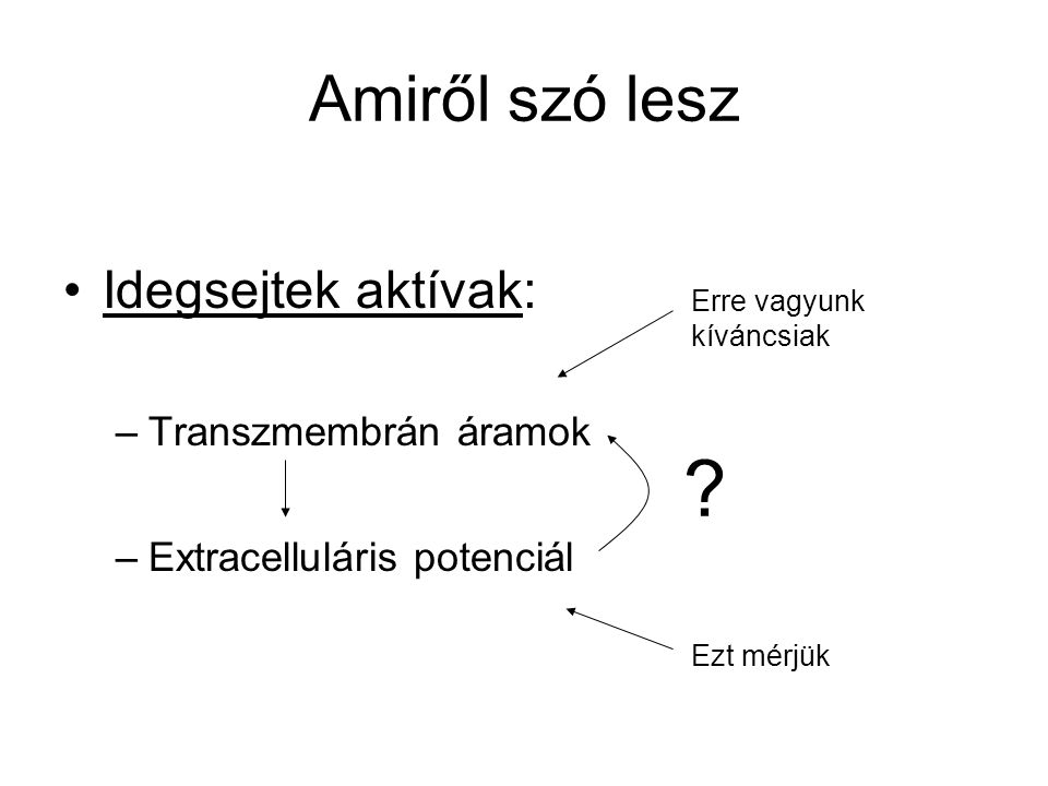 Amiről szó lesz Idegsejtek aktívak: –Transzmembrán áramok –Extracelluláris potenciál .