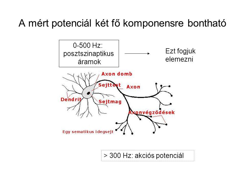 A mért potenciál két fő komponensre bontható > 300 Hz: akciós potenciál 0-500 Hz: posztszinaptikus áramok Ezt fogjuk elemezni