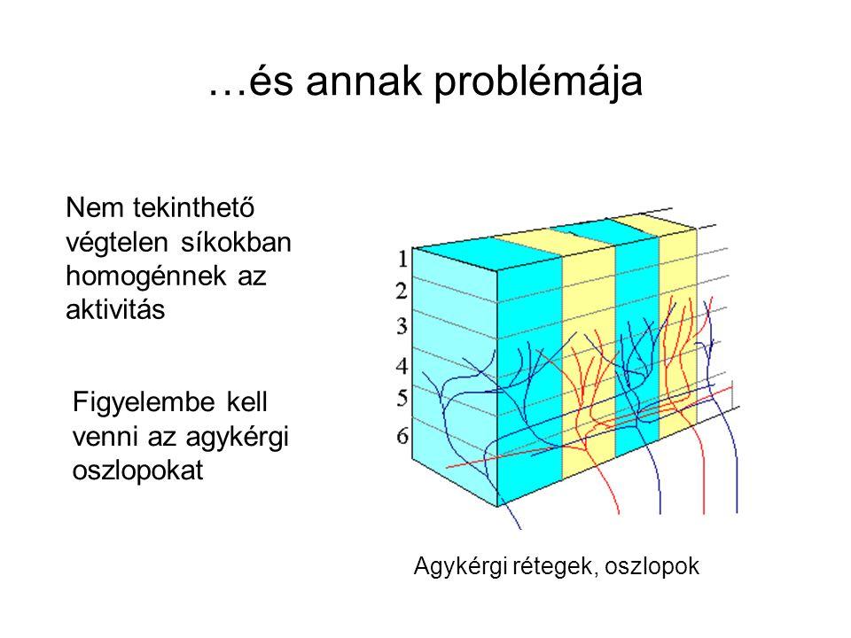 …és annak problémája Agykérgi rétegek, oszlopok Nem tekinthető végtelen síkokban homogénnek az aktivitás Figyelembe kell venni az agykérgi oszlopokat