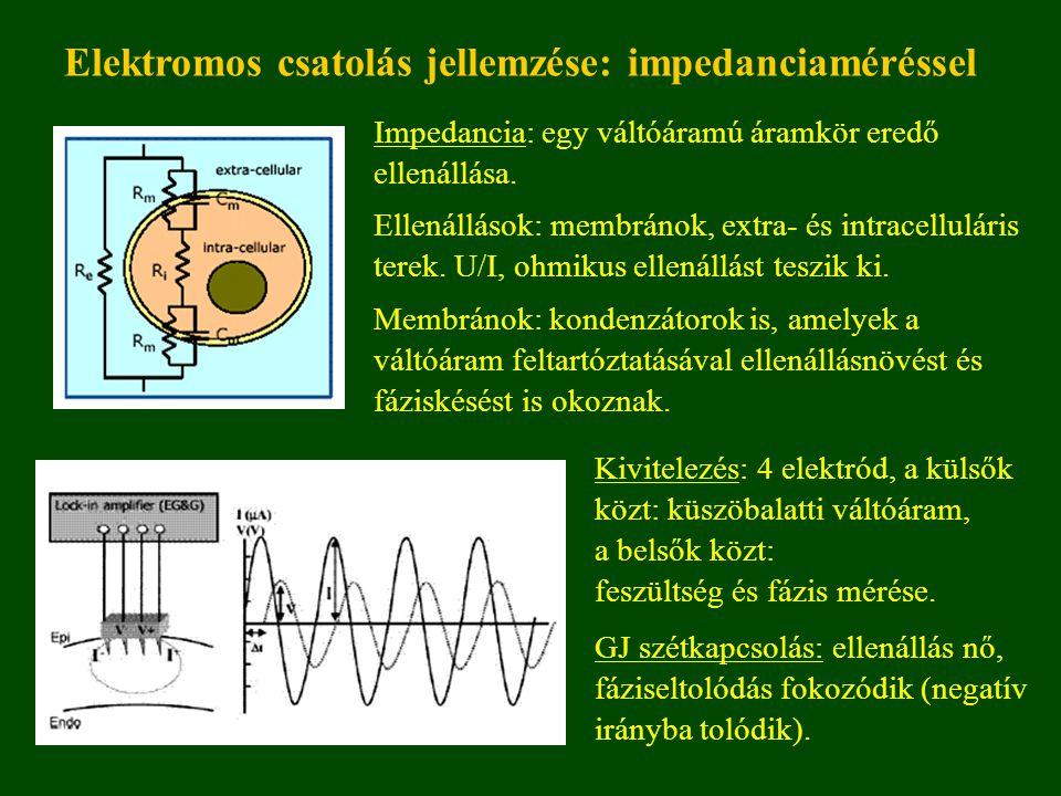 Elektromos csatolás jellemzése: impedanciaméréssel Impedancia: egy váltóáramú áramkör eredő ellenállása.