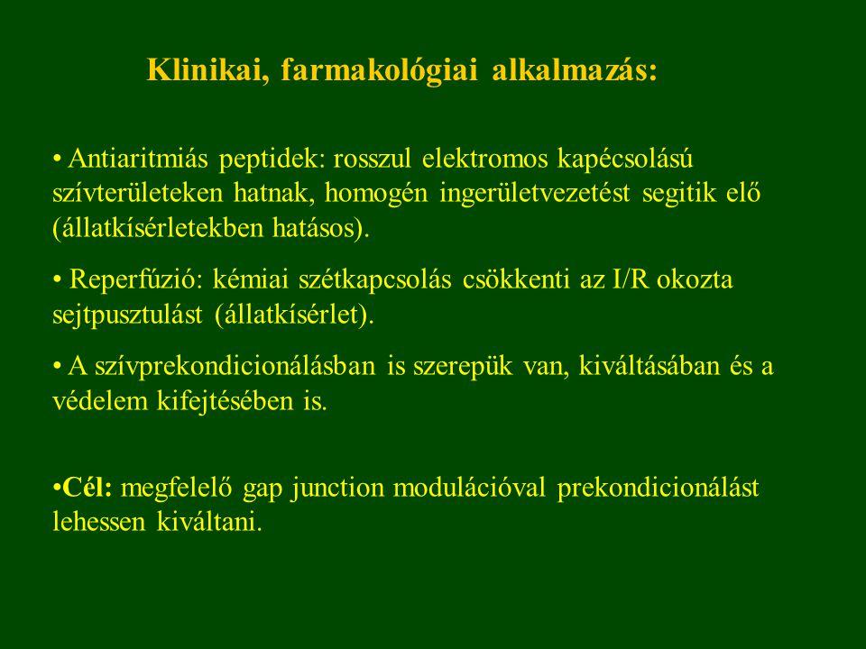 Antiaritmiás peptidek: rosszul elektromos kapécsolású szívterületeken hatnak, homogén ingerületvezetést segitik elő (állatkísérletekben hatásos).