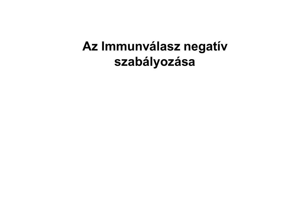 Az Immunválasz negatív szabályozása