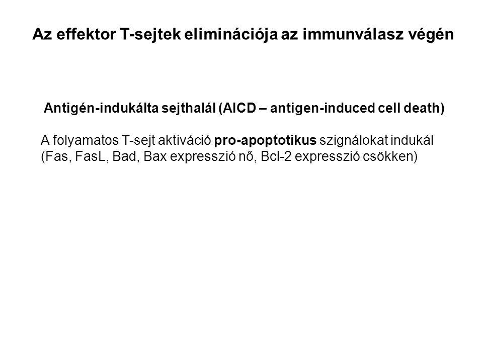 Treg NYUGVÓ Foxp3 + Treg THYMUS nTregPERIFÉRIAiTreg AKTIVÁLT Foxp3 + Treg Lokális hatások PAMP, TLR, NLR, RLR Gyulladás, IFN, TGFβ T sejt activació Treg aktiváció CTLA4, GITR, IL-10, IDO PD-1/PD-L Treg Treg TOLEROGÉN VÁLASZHELPER VÁLASZ lokális tolerancialokális immunválasz Treg át-programozás IL-6, IL-1 A REGULÁLÓ T LIMFOCITÁK KÉPZŐDÉSE KÖRNYEZET FÜGGŐ