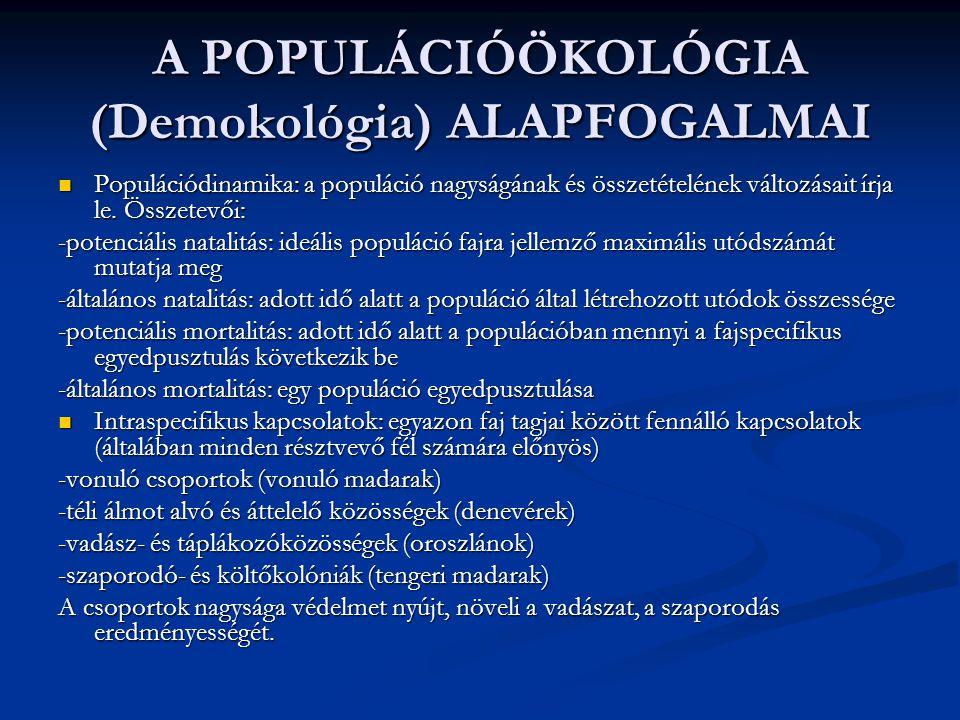A POPULÁCIÓÖKOLÓGIA (Demokológia) ALAPFOGALMAI Populációdinamika: a populáció nagyságának és összetételének változásait írja le.
