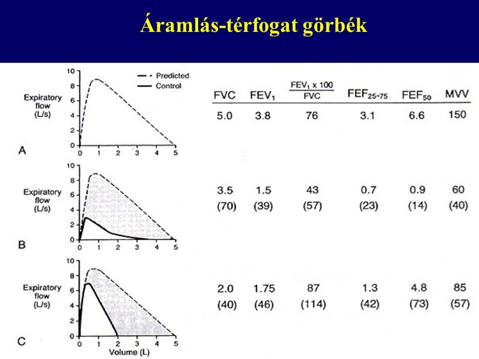 Statikus tüdőtérfogatok IC