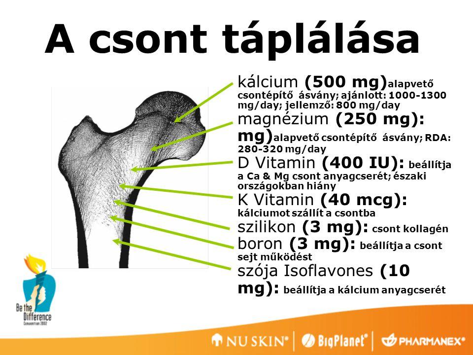 A csont táplálása kálcium (500 mg) alapvető csontépítő ásvány; ajánlott: 1000-1300 mg/day; jellemző: 800 mg/day magnézium (250 mg): mg) alapvető csont