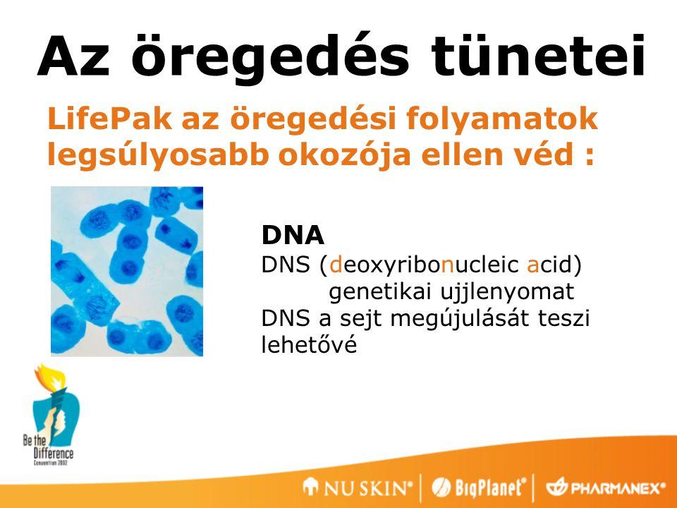 Az öregedés tünetei LifePak az öregedési folyamatok legsúlyosabb okozója ellen véd : DNA DNS (deoxyribonucleic acid) genetikai ujjlenyomat DNS a sejt