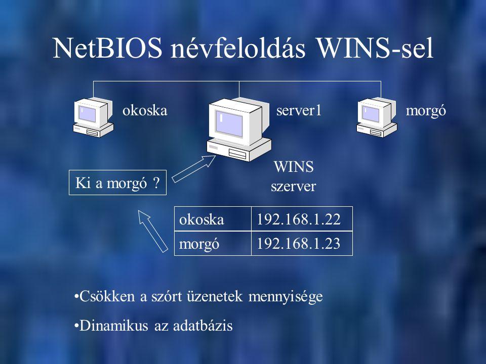 NetBIOS névfeloldás WINS-sel Ki a morgó .